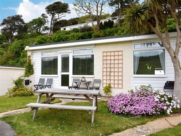 Suntrap in Ventnor, Isle of Wight