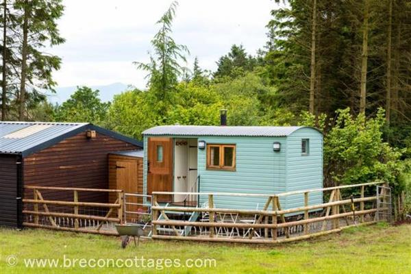 Sylvie's Shepherds Hut in Powys