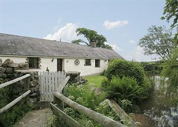 Tankey Lake Livery - Bluebell Cottage in West Glamorgan