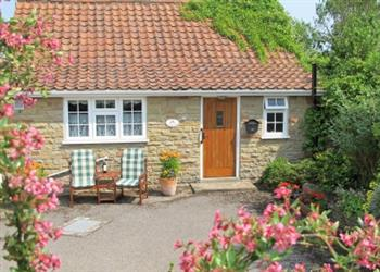 Terrington Holiday Cottages - Silverstones in North Yorkshire
