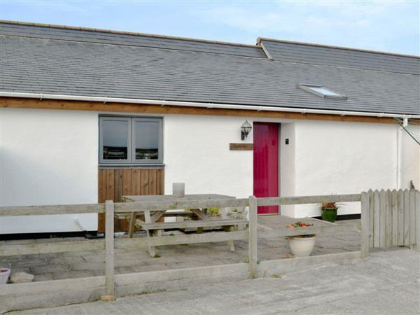 The 19th Acre - Pentowan Farm - Skylarks in Cornwall