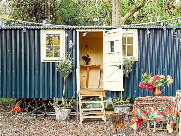 The Beech Hut, Dorset