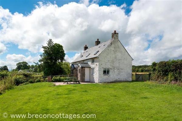 The Hatchery in Powys