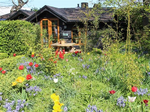 The Lodges - Bluebell Lodge in Kent