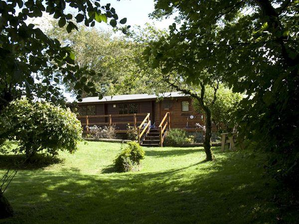 The Log Cabin in Dyfed