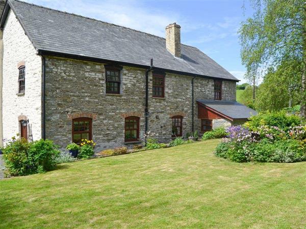 The Oak in Powys