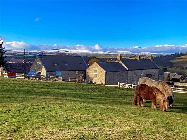 The Old Mill in Northumberland