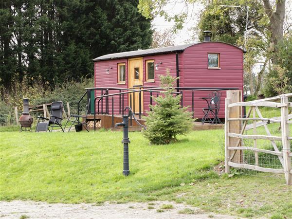 The Shire Hut in Denbighshire