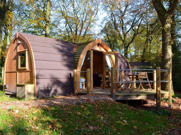 The Woodland Glade - Oak in Lancashire