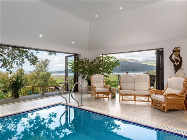 Treetops in Gwynedd