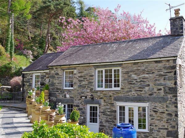 Tyn y Fron Cottage in Gwynedd