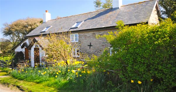 Upper Castlewright Cottage in Powys