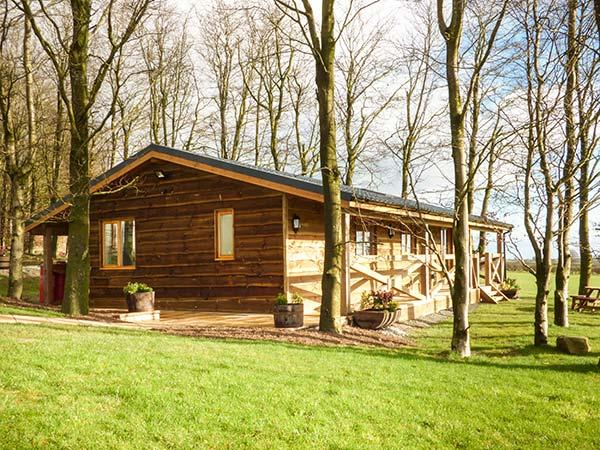Valley View Lodge in Powys