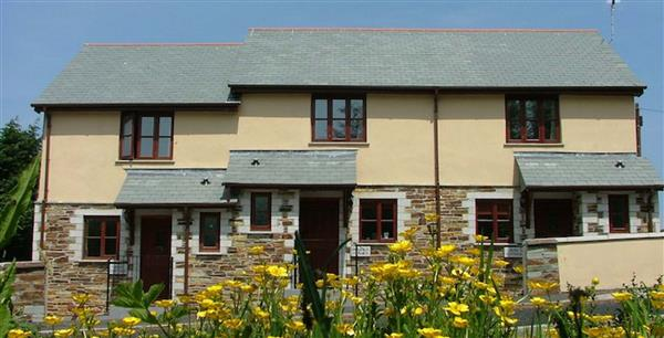 Violet Cottage in Camelford, North Cornwall