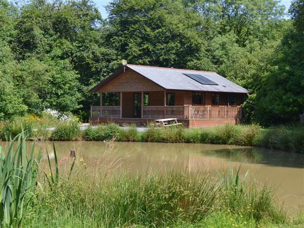 Waldon Valley Lodges - Hazel Lodge in Cornwall