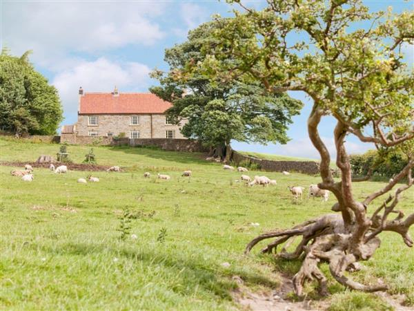 Warren Farmhouse, North Yorkshire