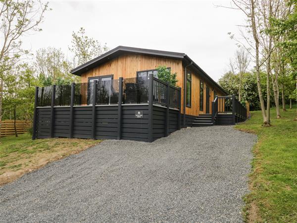 Watch Tree Lodge in Cumbria