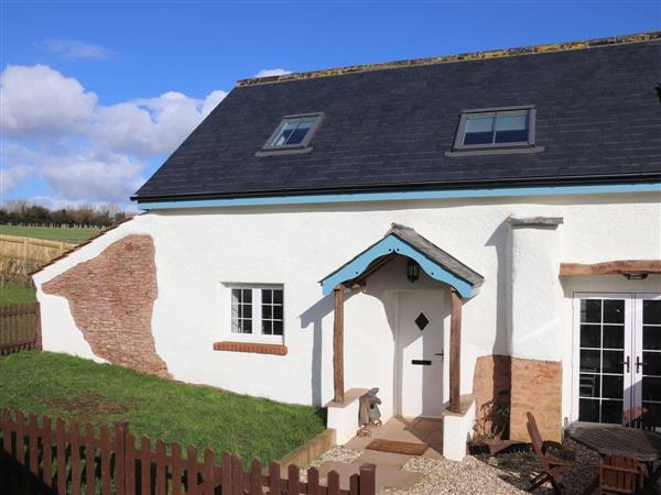 Waygate Farm - Little Cob Cottage in Devon