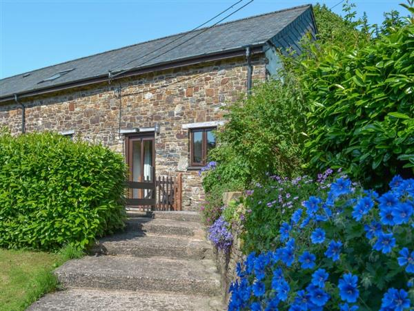 Week Farm Cottages - The Apple Cellar in Devon