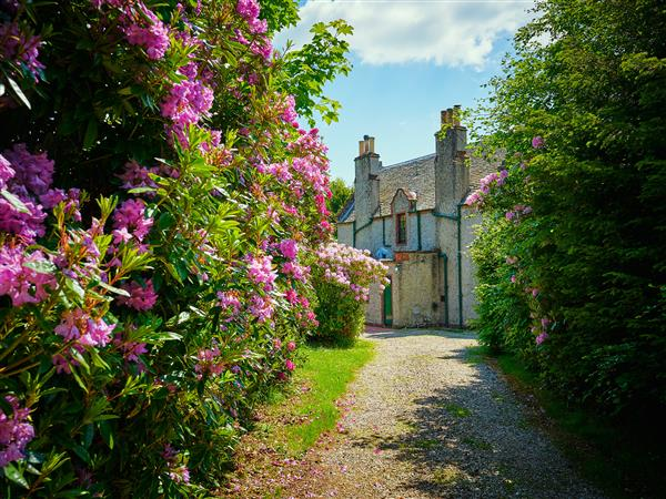 West Lodge in Angus