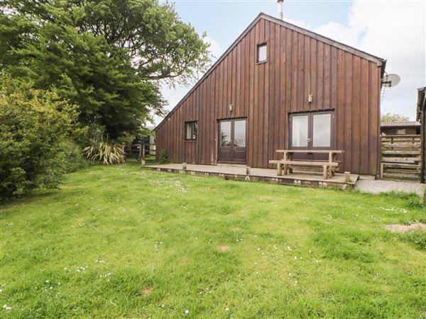 WhiteTor Farm: Meader in Devon