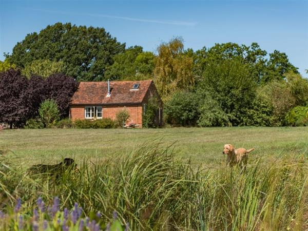 Wild Meadow Cottage in Kent