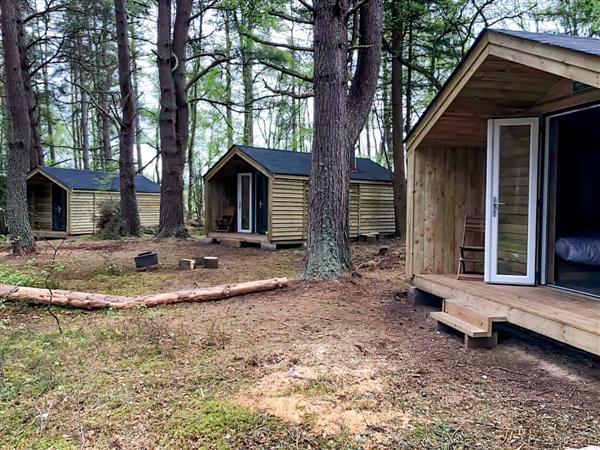 Wildwoodz - Willow Cabin in Ross-Shire