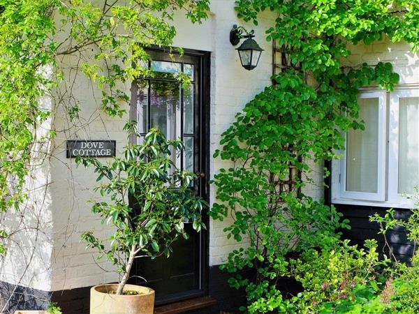 Wissett Place Cottages - Dove Cottage, Halesworth, Suffolk., Eastern England