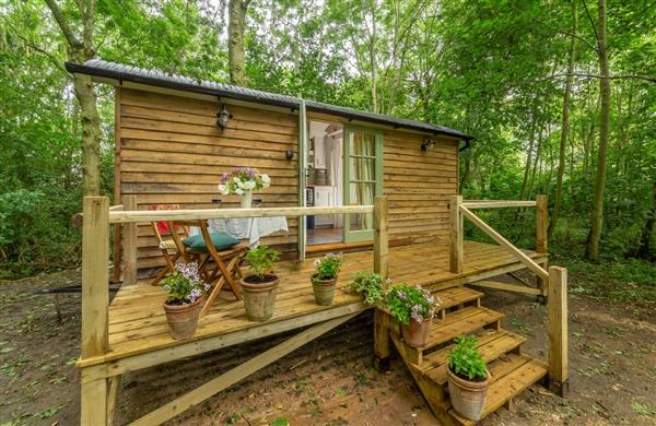 Woodland Retreat Shepherd's Hut in Suffolk