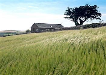 Wooldown Holiday Cottages - Woolbarn in Cornwall