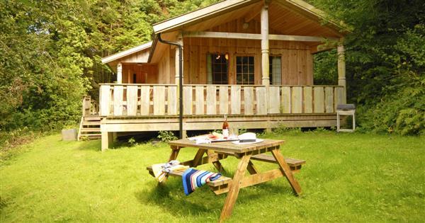 Y Berllan Log Cabin,