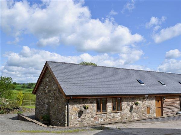 Y Dderwen in Powys