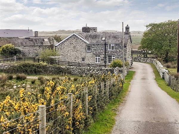 Ynys in Gwynedd